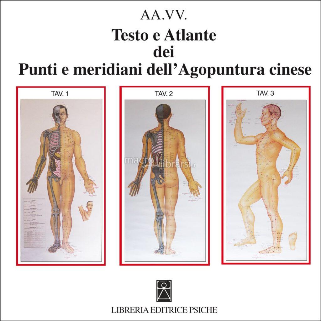 agopuntura, schema punti e meridiani